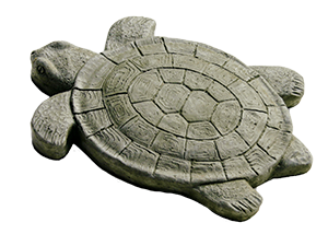 Stepping stone that looks like a turtle